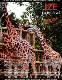 IZE Journal 2012 cover