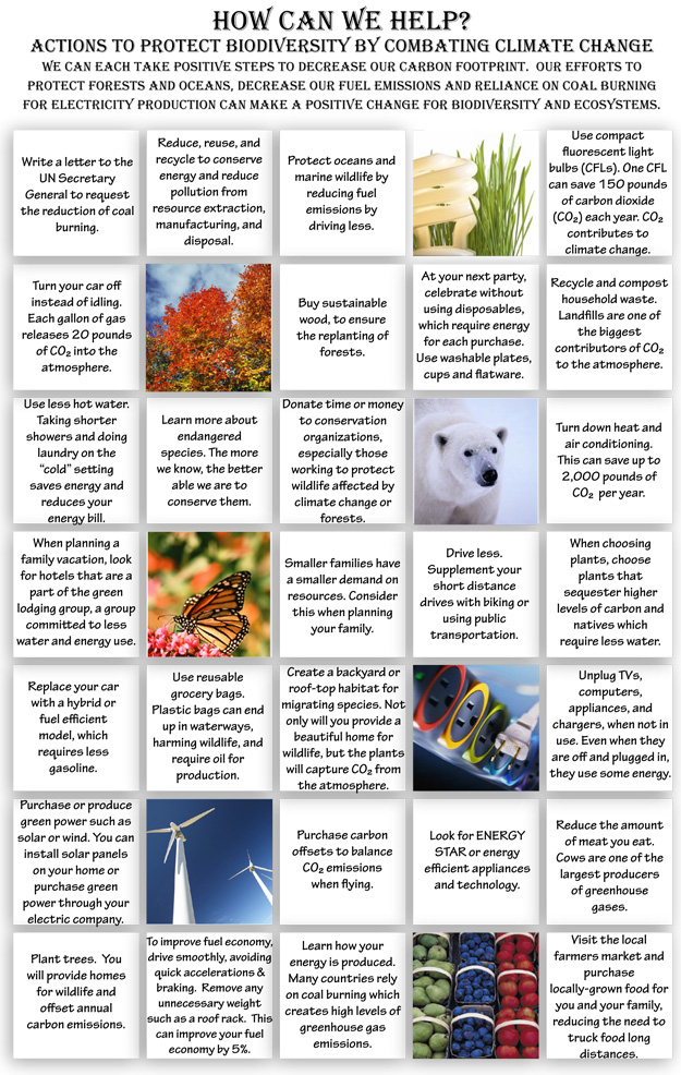 year of the forests action grid