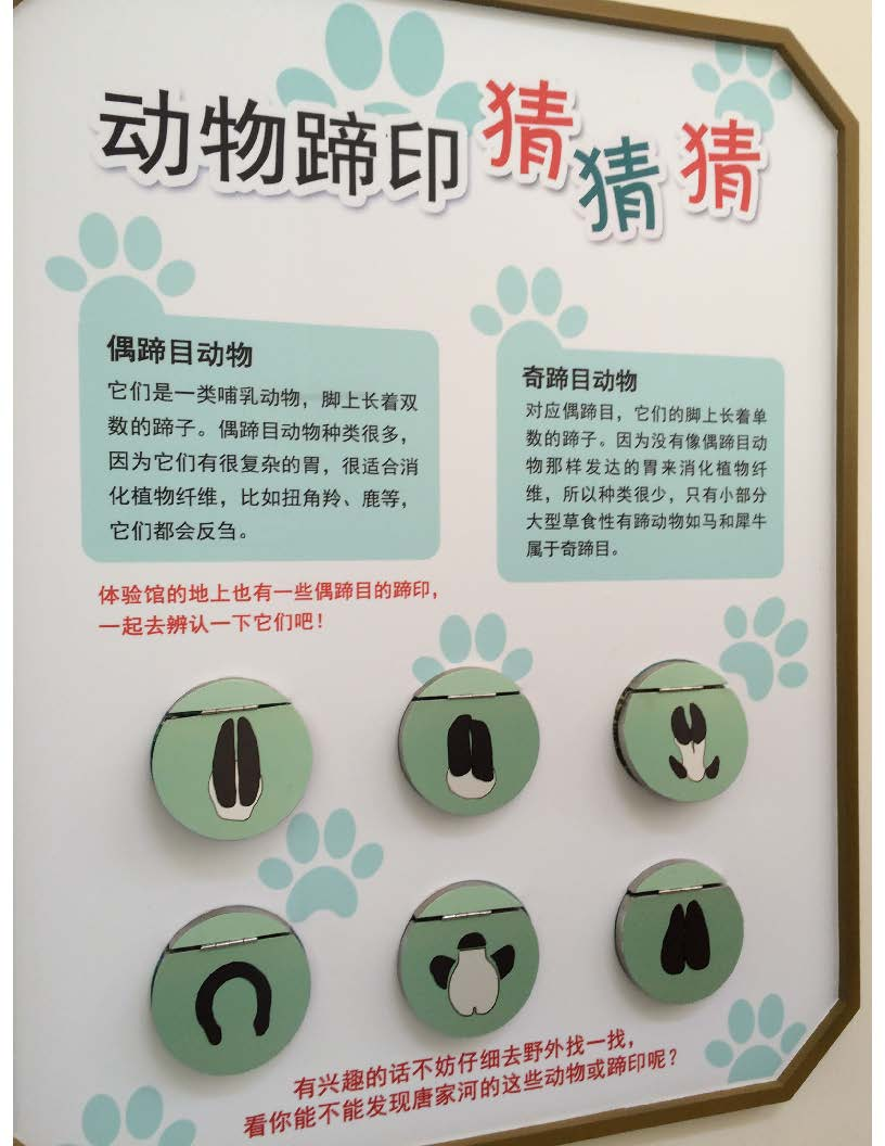 Interactive panels at the visitor centre to encourage visitors to look for various animal footprints in the nature reserve