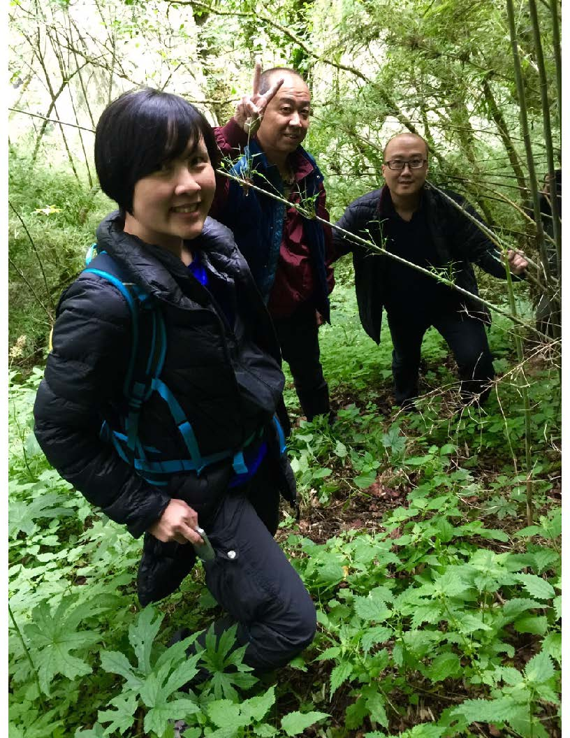 Hiking up the steep slopes accompanied by Sichuan State Forestry Director Wang